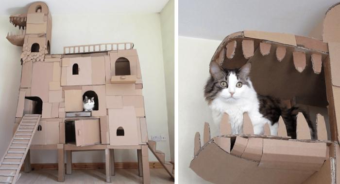 Kastil Rumah Kucing Dari Kardus