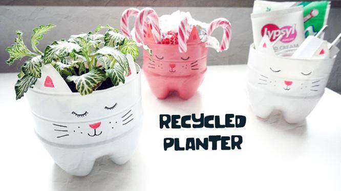 Pot Bunga Dari Botol Plastik Daur Ulang