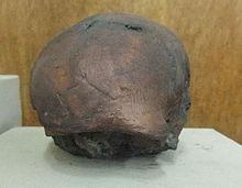 Fosil Pithecanthropus Mojokertensis Atau Anak Mojokerto
