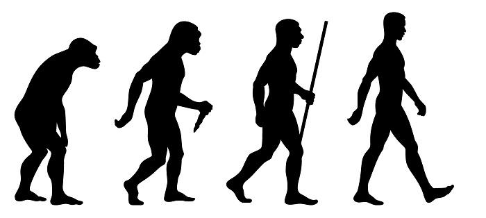 Ilustrasi Evolusi Manusia Purba Ke Manusia Modern