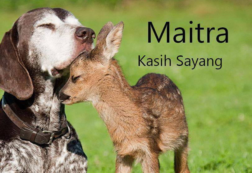 Maitra Artinya Kasih Sayang
