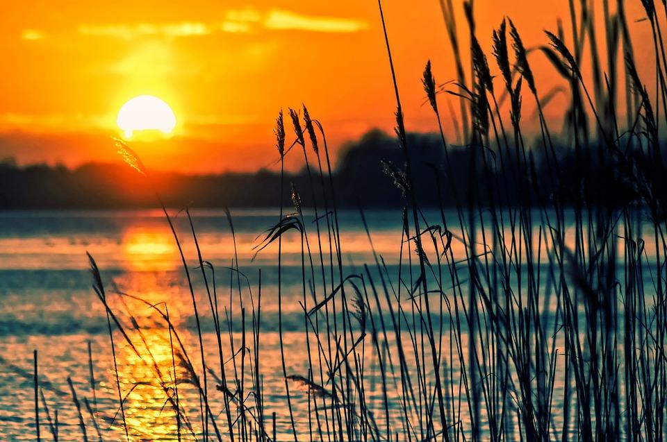 Pemandangan Sunset Di Danau Reeds