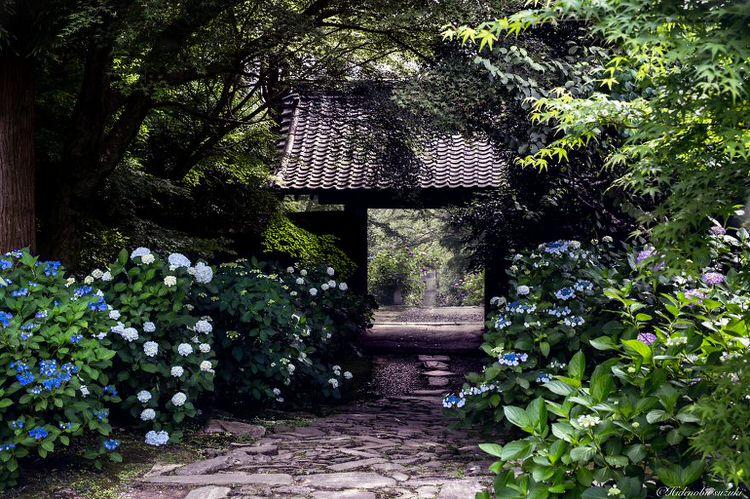 Pintu Gerbang Kuil