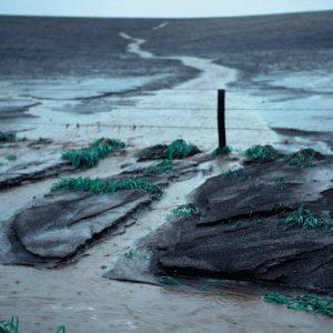 Erosi Tanah – Pengertian, Jenis, Dampak, dan Faktor yang Mempengaruhi